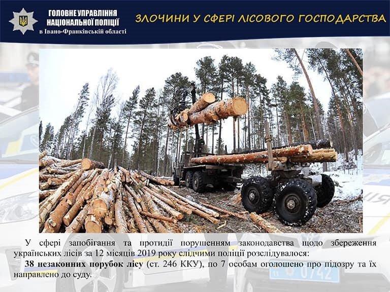 Прикарпаття – один з найбезпечніших регіонів, – Володимир Голубош, фото-4