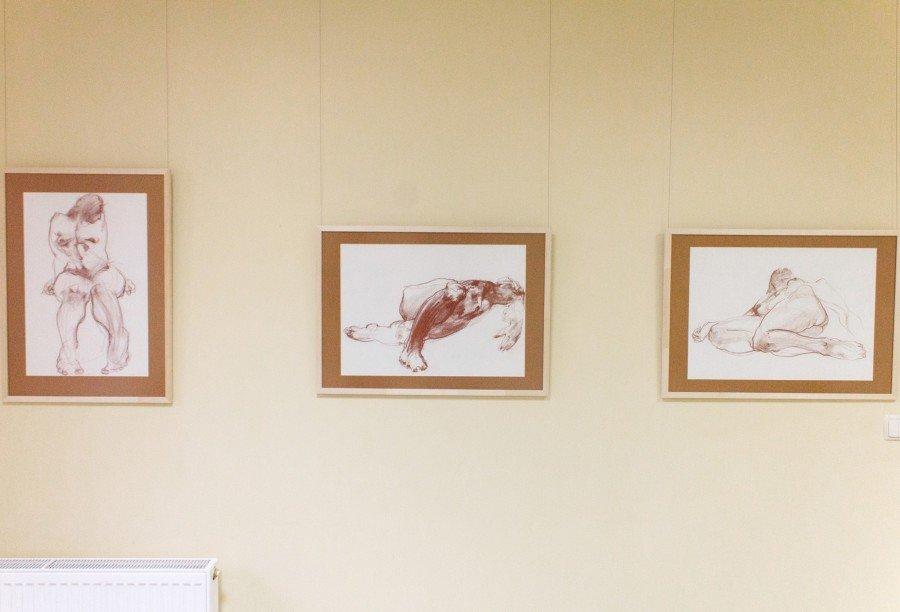 Персональна виставка художника Миколи Грицеляка відкрилась в Івано-Франківську (фото), фото-3