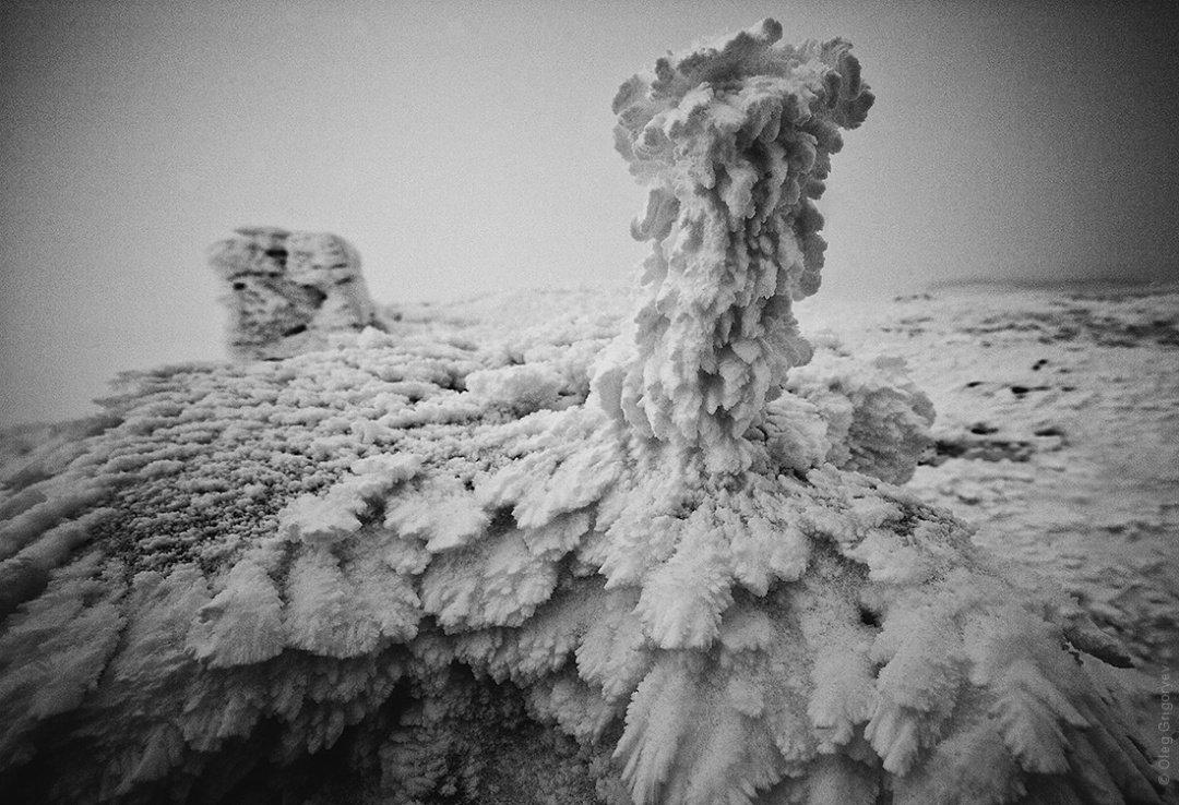 """Фотограф та мандрівник Олег Григорьєв розповів про п'ять днів, проведених в обсерваторії """"Білий Слон"""" (фото), фото-5"""
