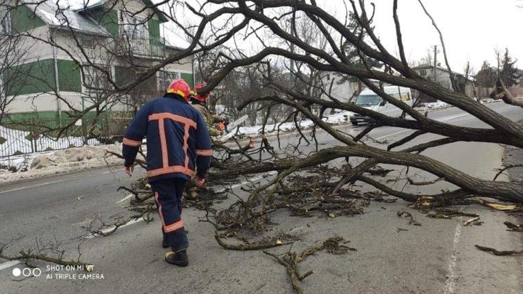 Знесені дахи та повалені дерева: на Долинщині рятувальники ліквідовують наслідки негоди, фото-2