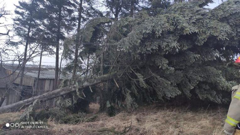 Знесені дахи та повалені дерева: на Долинщині рятувальники ліквідовують наслідки негоди, фото-5