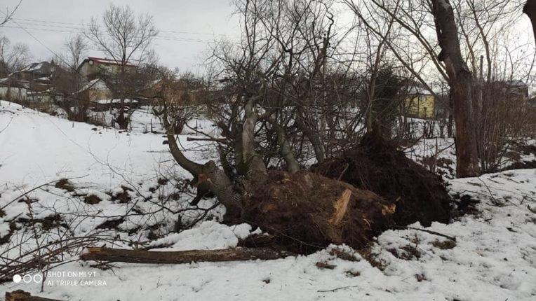 Знесені дахи та повалені дерева: на Долинщині рятувальники ліквідовують наслідки негоди, фото-6