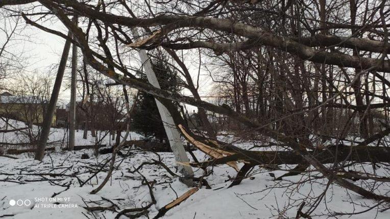 Знесені дахи та повалені дерева: на Долинщині рятувальники ліквідовують наслідки негоди, фото-7