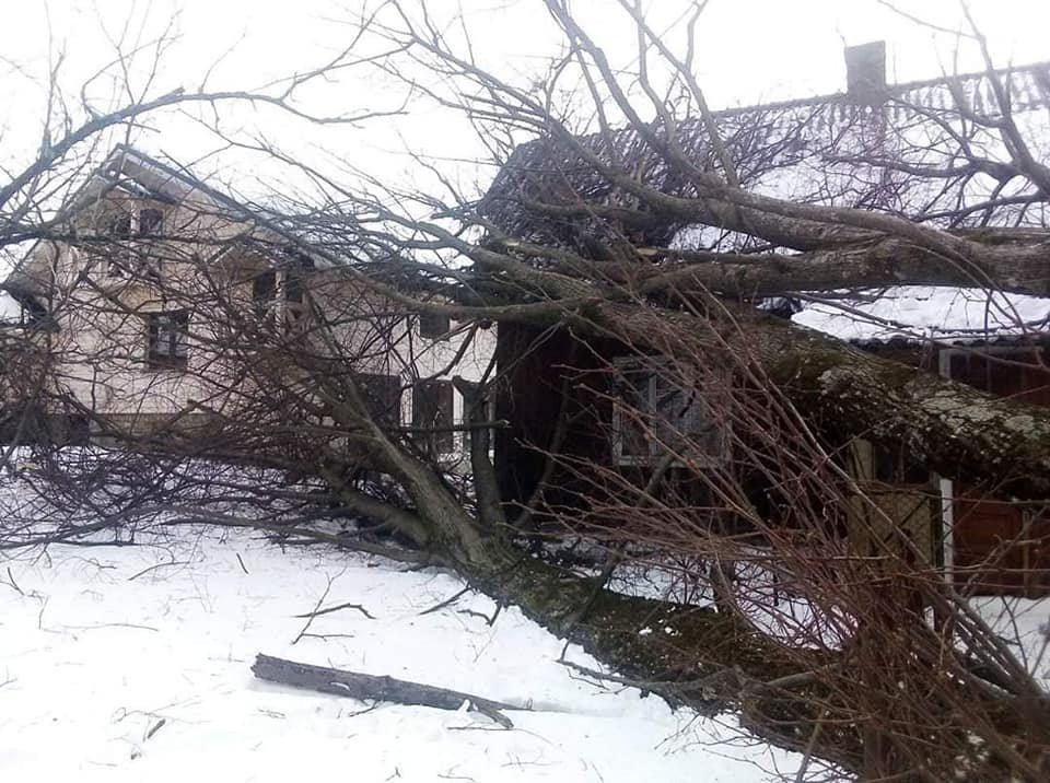 На Прикарпатті знеструмлено 43 населених пункти повністю та 50 частково, фото-2