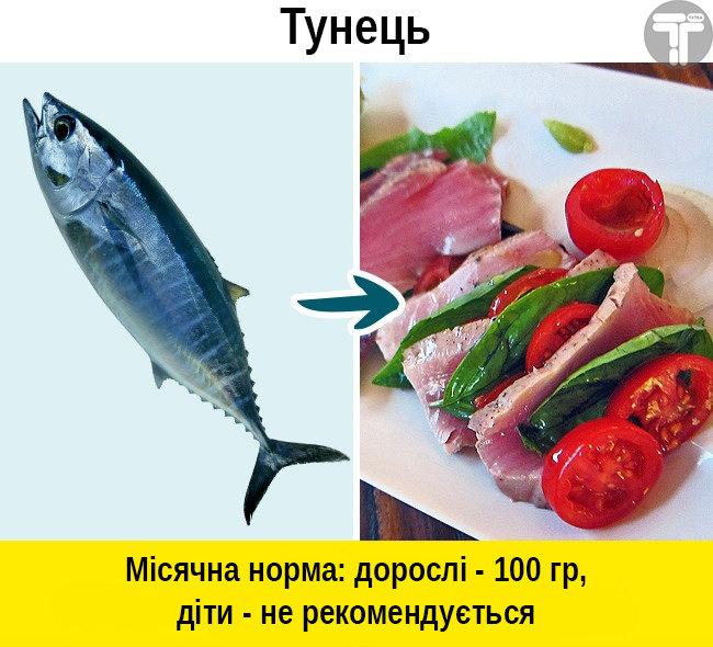 Це потрібно знати. Популярні видів риби, які приносять скоріш шкоду, ніж користь, фото-3