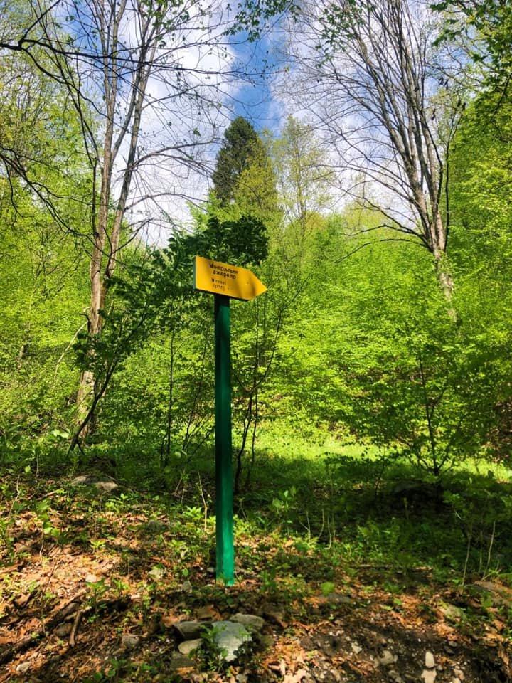 Карпатський біосферний заповідник готує для туристів нові стежки та маршрути (фото), фото-4