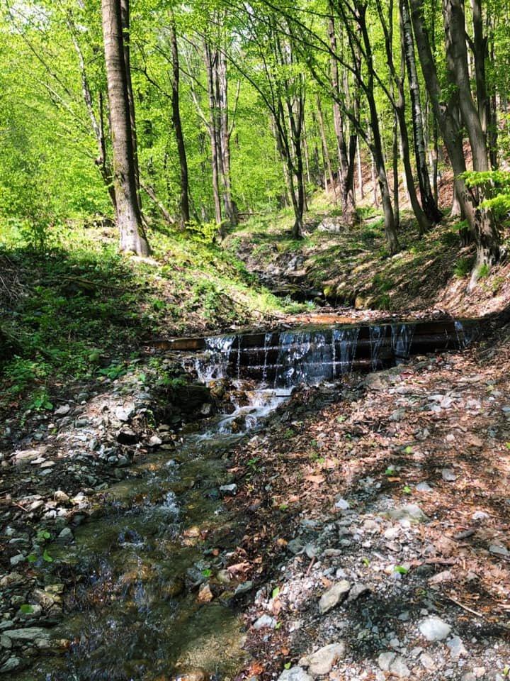 Карпатський біосферний заповідник готує для туристів нові стежки та маршрути (фото), фото-2
