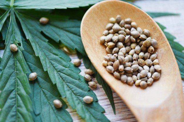 Семена конопли выгодно марихуаны купить в омске